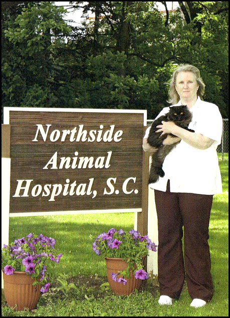 Northside animal hospital kenosha, wi